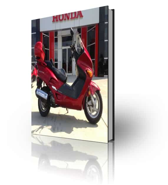 Honda NSS250 Reflex Repair Manual