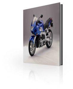 The Official BMW K1200R Sport Repair Manual