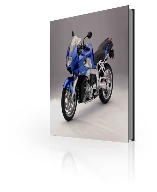 The Official BMW K1200R Sport Repair Manual