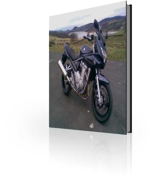 Suzuki GSF1250 Repair Manual